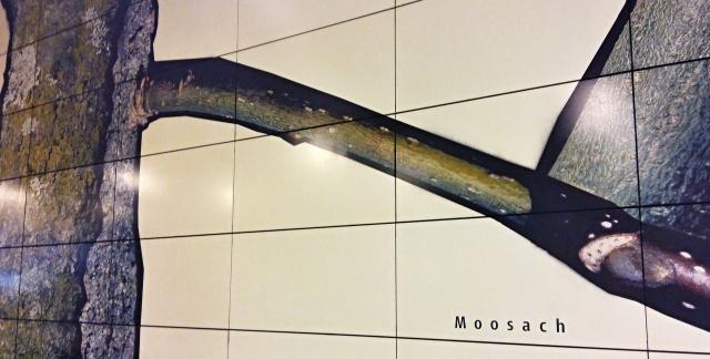 moosach